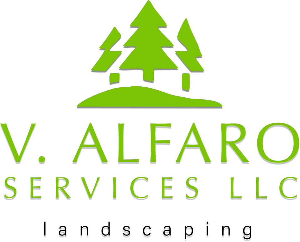 V. Alfaro Services LLC